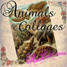 Animals Collages