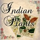 Indian Plants