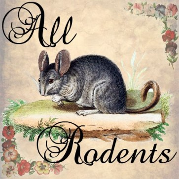 all rodents