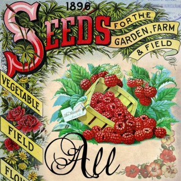all seeds catalogs