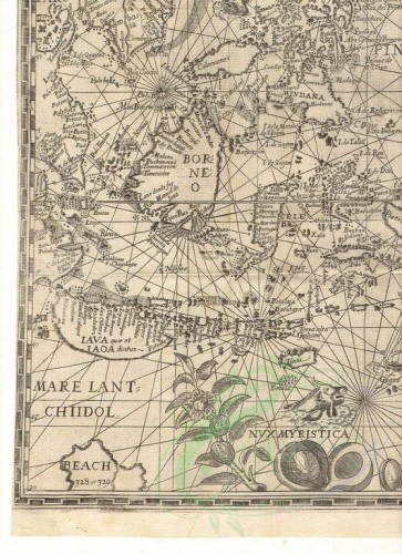 antique_maps-00205 - Spice Islands 13 [2552x3510]