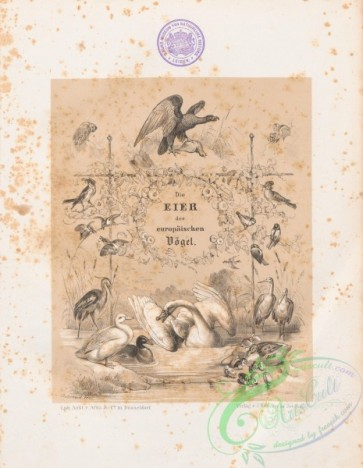 books_covers-00150 - 210570-104