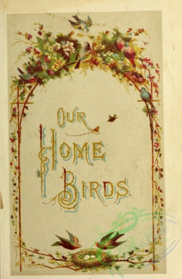 decorations-00007 - 001-Our Home Birds