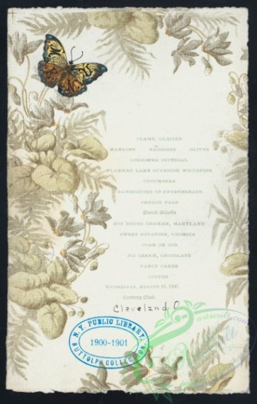 menu-01567 - 01490-Botanical Frame, Butterfly