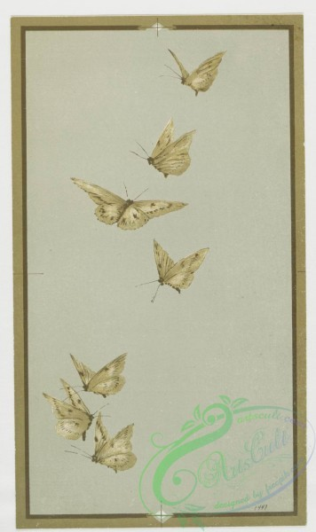 prang_cards_butterflies-00021 - 0419-Easter cards depicting birds and butterflies on tree branches 105685