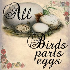 all birds parts eggs