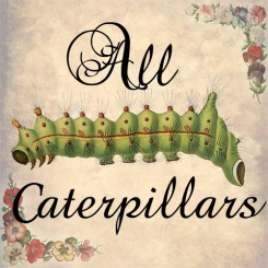 all caterpillars