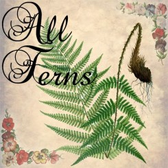 all ferns