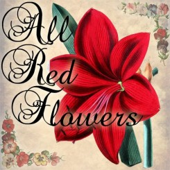 all red flowers