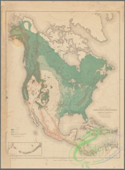 antique_maps-02443 - Map showing the position of the forest, prairie & treeless regions of North America exclusive of Mexico