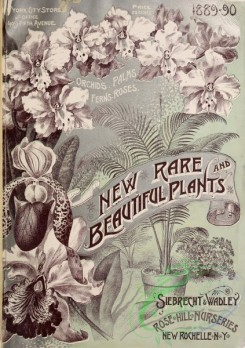 botanical-21385 - black-and-white 015-Frontispiece