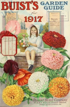 chrysanthemum-00325 - 072-Small girl, basket, stone wall, Chrysanthemum, Sweet peas