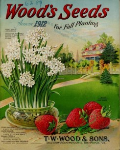 conifer-00140 - Strawberry, Narcissus in vase, Park, Cottage, stone wall, Fir [3431x4263]