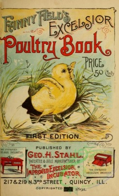 decorations-00002 - 001-Fanny Field's Excelsior Poultry Book
