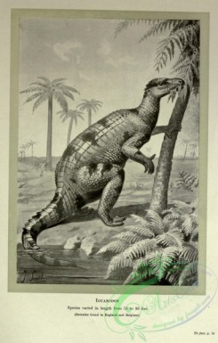 dinosaurs-00156 - black-and-white 028-Iguanodon