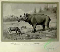 dinosaurs-00171 - black-and-white 043-Orohippus, Tinoceras