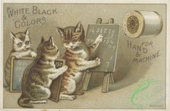 ephemera_advertising_trading_cards-00326 - 0326-Cats, desk, school, learning, numbers [3000x1958]