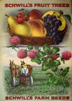 grapes-00020 - 046-Gardener, Horses, Clover, Pear, Cherry, Grapes, Apple, Peach, Frame [2573x3617]
