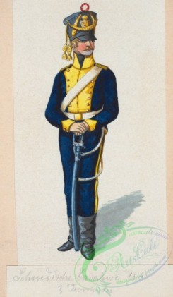 military_fashion-02028 - 108764-Norway and Sweden, 1814