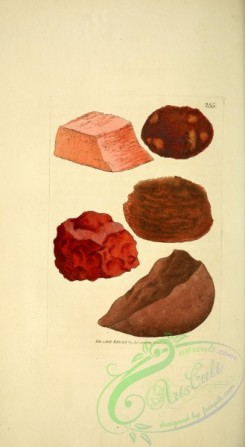minerals-00191 - 255-unspecified [1878x3421]