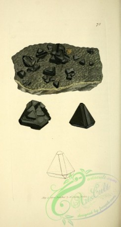 minerals-00411 - 075-unspecified [1803x3379]