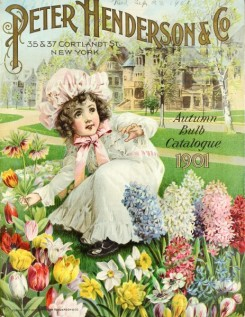 narcissus-00101 - 011-Girl in flowers, tulips, hyacinthus, narcissus