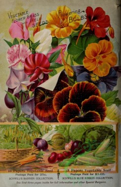 pansy-00156 - 052-Frame, vegetables, flowers, nasturtium, Sweet Pea, pansies