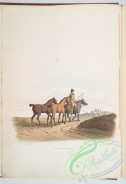 people-00557 - 001-The horse dealer