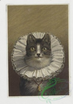 prang_cards_animals-00002 - 0012-Christmas and New Year cards depicting cats, dogs, books 101130