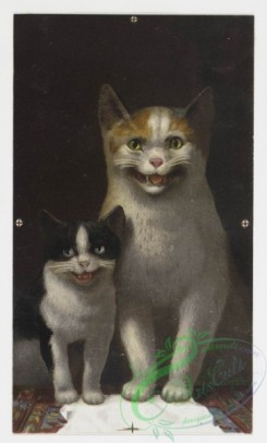 prang_cards_animals-00022 - 0145-Christmas cards depicting animals-owls, bears, cats, and dogs 101926