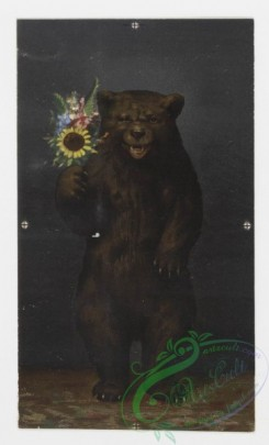 prang_cards_animals-00024 - 0145-Christmas cards depicting animals-owls, bears, cats, and dogs 101928
