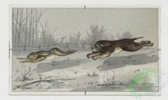 prang_cards_animals-00026 - 0148-Christmas, New Year, and birthday cards depicting winter landscapes with dogs, rabbits, birds, and flowers 102046
