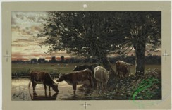 prang_cards_animals-00057 - 0442-Birthday, Christmas, and New Year cards depicting cows, sheep, flowers in baskets, tree branches, sunsets, landscapes and a church 105859