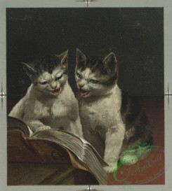 prang_cards_animals-00062 - 0477-Christmas cards depicting cats reading, bears dancing, owls singing, tortoise, and hare 106101
