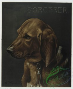prang_cards_animals-00088 - 0652-(A print with the word 'Sorcerer' and depicting a portrait of a hunting dog.) 107122
