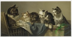 prang_cards_animals-00130 - 0912-School's in. (Print depicting cats in wicker basket receiving lesson from a cat. Large envelope.) 108239