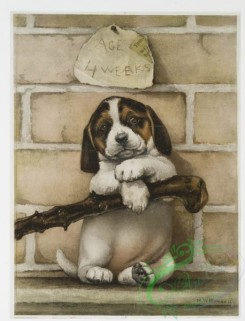 prang_cards_animals-00144 - 1058-Age 4 Weeks (Christmas and New Year card depicting portrait of dog with stick and brick wall) 100225