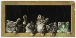 prang_cards_animals-00145 - 1064-Prize pussies 100247