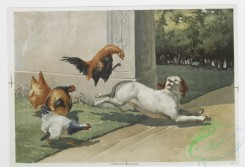 prang_cards_animals-00159 - 1139-Prints entitled 'the advance' and 'the retreat,' depicting a dog chasing roosters and roosters chasing the dog 100506