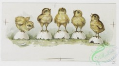 prang_cards_animals-00166 - 1190-Easter cards depicting chicks using flowers as umbrellas and standing on egg shells, a print entitled 'Thomas's Orchestra' depicting a cat orchestra 100732