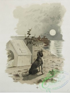 prang_cards_animals-00185 - 1224-A Calendar depicting dogs-laying on a pillow, in the forest, howling at the moon and drinking water 100910