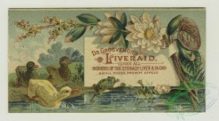 prang_cards_animals-00203 - 1383-Cigarette cards entitled 'between the acts and bravo' of Mrs. Cornwallis West, Minnie Palmer and Maude Branscombe, Trade cards depicting chicks, duck 101508