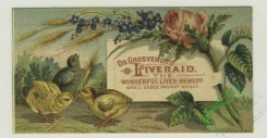 prang_cards_animals-00205 - 1383-Cigarette cards entitled 'between the acts and bravo' of Mrs. Cornwallis West, Minnie Palmer and Maude Branscombe, Trade cards depicting chicks, duck 101510