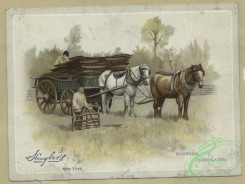 prang_cards_animals-00228 - 1593-Trade cards depicting flowers, a horse and wagon 102528