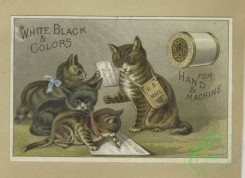 prang_cards_animals-00241 - 1648-Trade cards depicting cats writing, rabbits traveling on bicycles, a woman upset about a courtship, women from various countries holding flags and pos 102834