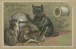 prang_cards_animals-00247 - 1661-Trade cards depicting boats, flowers, cats, thread, a globe and a flower personified 102906