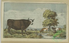 prang_cards_animals-00248 - 1667-Trade cards depicting birds, cows, a woman holding a mask, children fishing with a net, children eating and drinking on a boat and cupid presenting a 102932