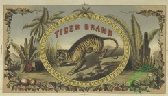 prang_cards_animals-00266 - 1721-(An advertisement for Tiger Brand depicting a tiger in a tropic environment.) 103352