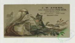 prang_cards_animals-00267 - 1739-Trade cards depicting puppies, kittens, birds, an owl, a peacock, baskets, flowers, leaves and the moon 103397