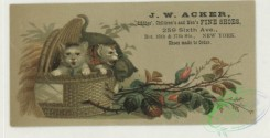 prang_cards_animals-00268 - 1739-Trade cards depicting puppies, kittens, birds, an owl, a peacock, baskets, flowers, leaves and the moon 103398